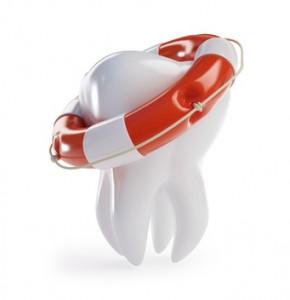 Zahntransplantation als letzte Rettung, um den Zahn zu erhalten